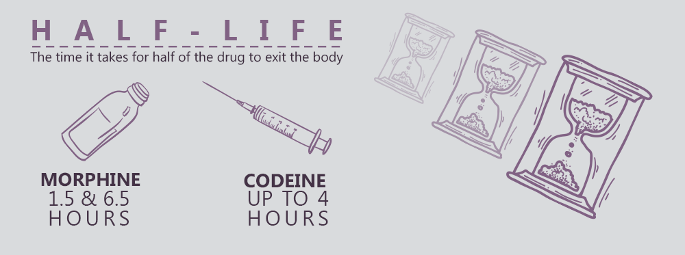 What Does the Term Half-Life Mean for Opiates?